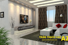 mau-tran-thach-cao-cong-ty-az-03