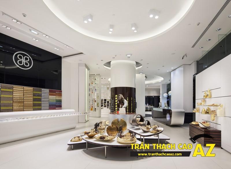 Không gian bắt buộc phải sử dụng trần thạch cao - không gian showroom, shop