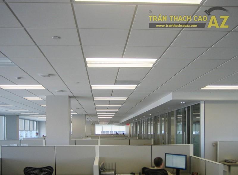 Sử dụng trần thả văn phòng vừa đẹp vừa tiết kiệm chi phí